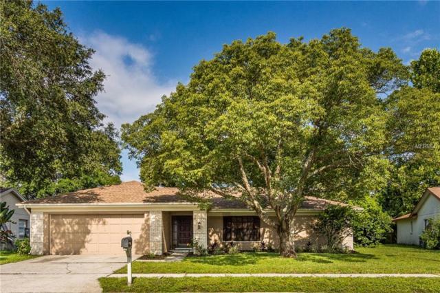 9813 Stephenson Drive, New Port Richey, FL 34655 (MLS #U8011112) :: Griffin Group
