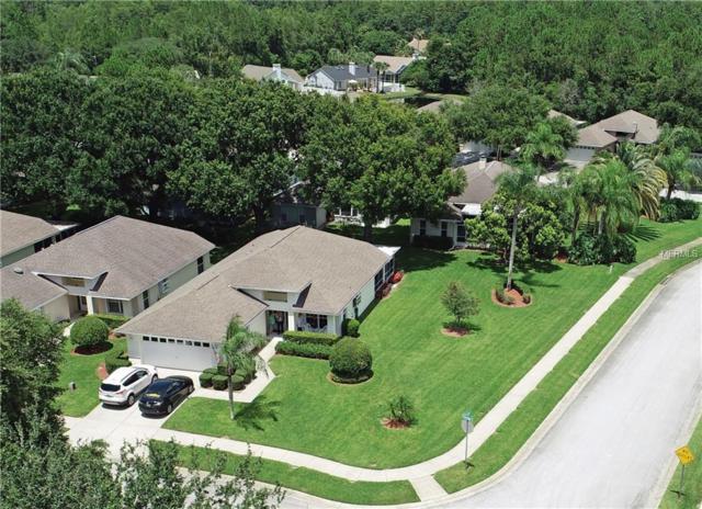 1122 Trafalgar Drive, New Port Richey, FL 34655 (MLS #U8011137) :: Griffin Group
