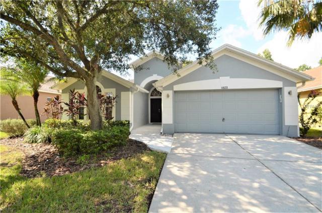 11820 Easthampton Drive, Tampa, FL 33626 (MLS #U8011254) :: The Duncan Duo Team