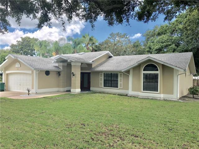 2412 Country Trails Drive, Safety Harbor, FL 34695 (MLS #U8011295) :: Jeff Borham & Associates at Keller Williams Realty