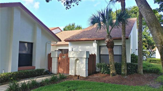 14766 Feather Cove Lane, Clearwater, FL 33762 (MLS #U8011305) :: Griffin Group