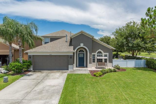 8141 Lucidul Court, Trinity, FL 34655 (MLS #U8011341) :: Jeff Borham & Associates at Keller Williams Realty