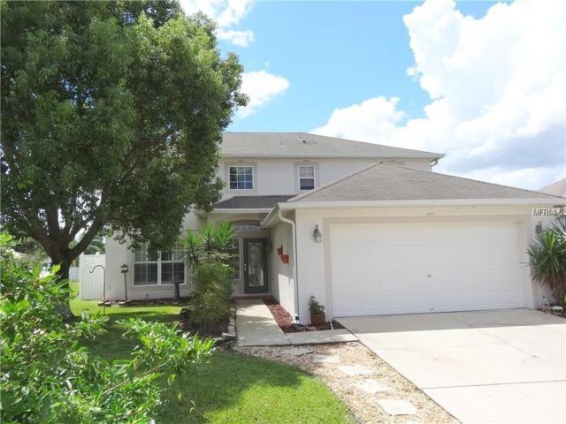 24726 Ravello Street, Land O Lakes, FL 34639 (MLS #U8011449) :: Cartwright Realty