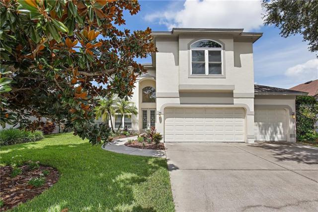 4103 Grandchamp Circle, Palm Harbor, FL 34685 (MLS #U8011501) :: Jeff Borham & Associates at Keller Williams Realty