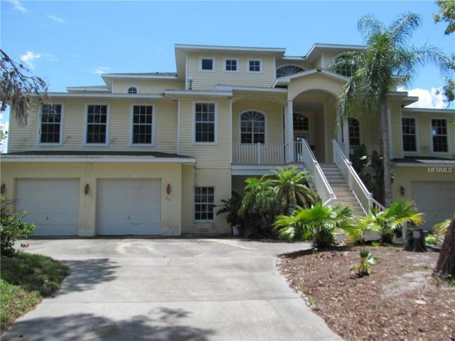 271 Sanctuary Drive, Crystal Beach, FL 34681 (MLS #U8011524) :: Zarghami Group
