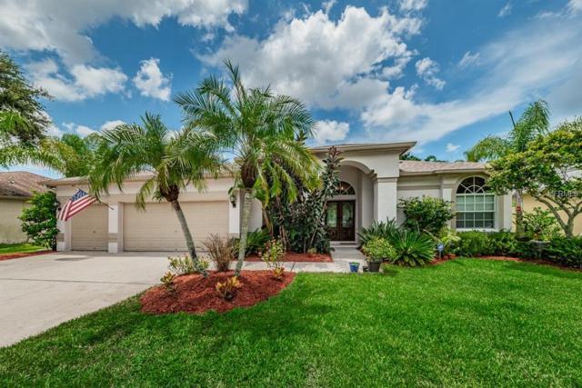 2456 Appaloosa Trail, Palm Harbor, FL 34685 (MLS #U8011669) :: Jeff Borham & Associates at Keller Williams Realty