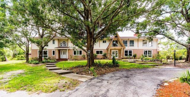 970 Pine Hill Road, Palm Harbor, FL 34683 (MLS #U8011694) :: Lock and Key Team