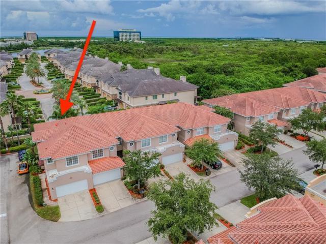 288 Valencia Circle, St Petersburg, FL 33716 (MLS #U8011790) :: Bustamante Real Estate