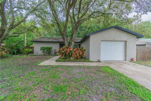 13921 Pathfinder Drive, Tampa, FL 33625 (MLS #U8011899) :: The Duncan Duo Team