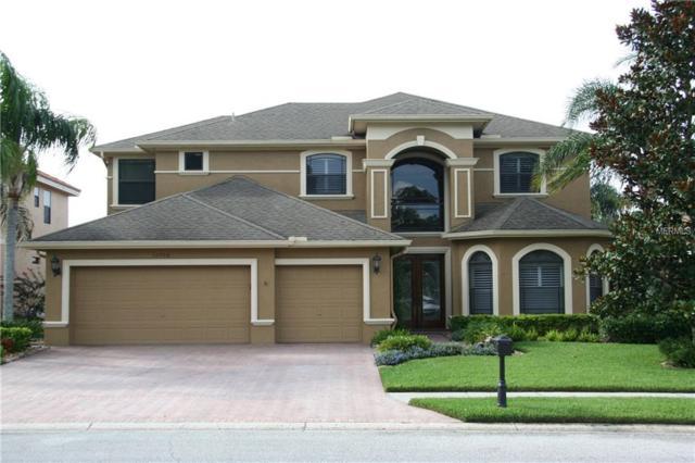 12708 Eagles Entry Drive, Odessa, FL 33556 (MLS #U8011904) :: O'Connor Homes