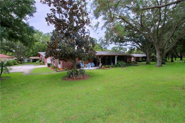 2320 Shelly Drive D, Palm Harbor, FL 34684 (MLS #U8011920) :: KELLER WILLIAMS CLASSIC VI