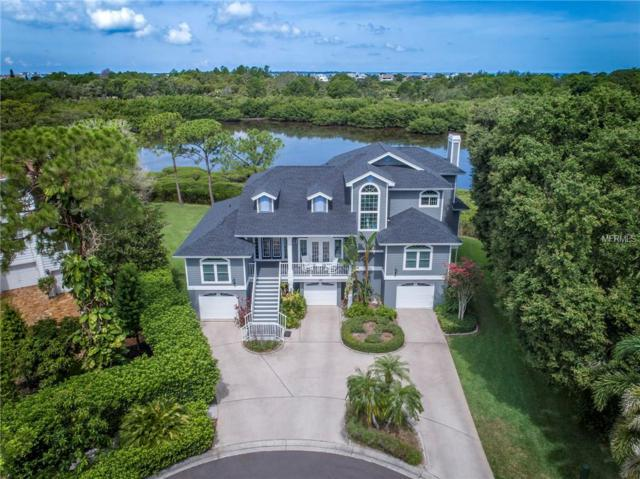 188 Sanctuary Trace, Crystal Beach, FL 34681 (MLS #U8011944) :: Beach Island Group
