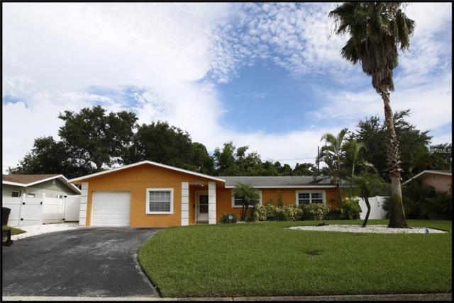 3548 Manatee Drive SE, St Petersburg, FL 33705 (MLS #U8012146) :: Revolution Real Estate