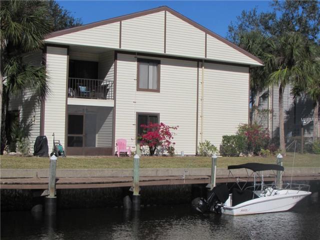348 Moorings Cove Drive #348, Tarpon Springs, FL 34689 (MLS #U8012177) :: RealTeam Realty