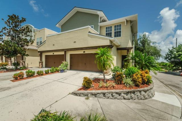 129 Athenian Way, Tarpon Springs, FL 34689 (MLS #U8012180) :: The Duncan Duo Team