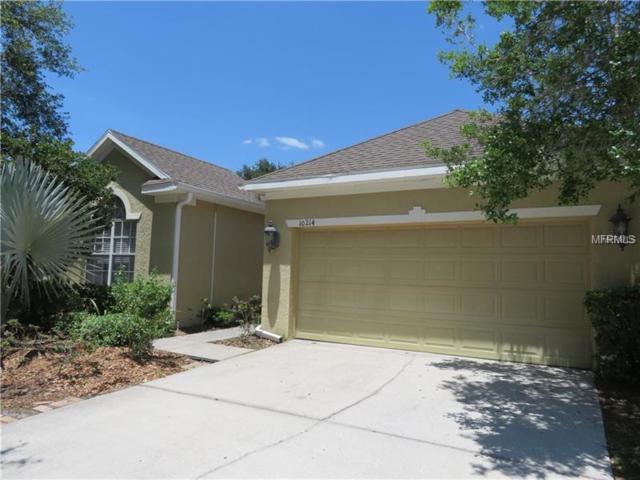 10214 Evergreen Hill Drive, Tampa, FL 33647 (MLS #U8012326) :: Team Bohannon Keller Williams, Tampa Properties