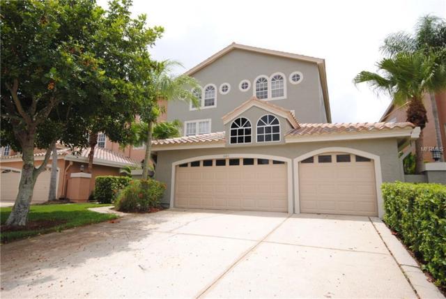 1684 Arabian Lane, Palm Harbor, FL 34685 (MLS #U8012637) :: NewHomePrograms.com LLC