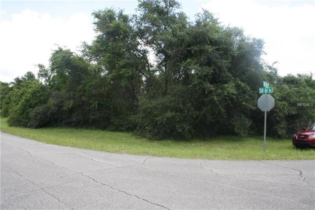 156TH Place, Ocala, FL 34473 (MLS #U8013363) :: The Duncan Duo Team