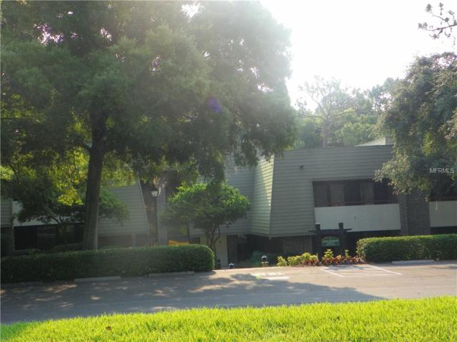 36750 Us Highway 19 N #24113, Palm Harbor, FL 34684 (MLS #U8013590) :: The Duncan Duo Team