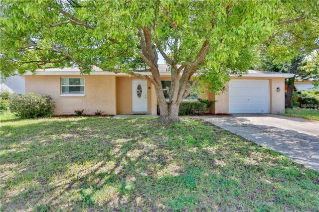 4838 Dogwood Street, New Port Richey, FL 34653 (MLS #U8013818) :: Mark and Joni Coulter   Better Homes and Gardens