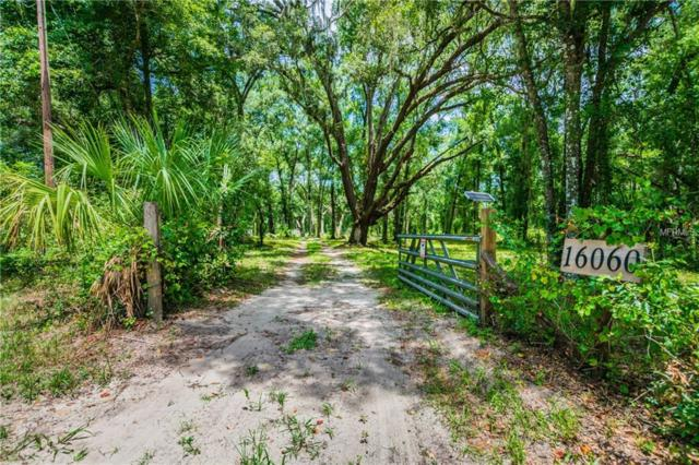 Lingle, Brooksville, FL 34601 (MLS #U8014112) :: Griffin Group