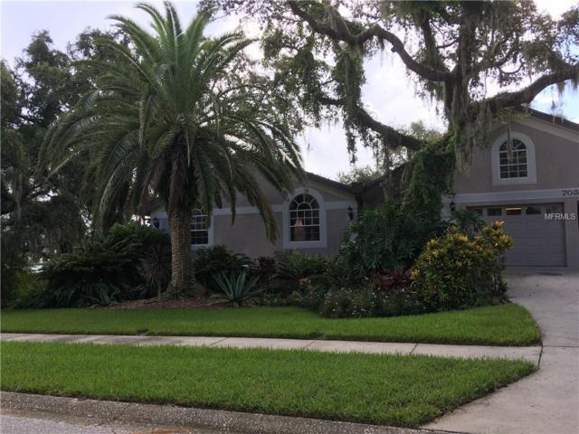 703 Waterview Lane, Tarpon Springs, FL 34689 (MLS #U8014117) :: The Light Team