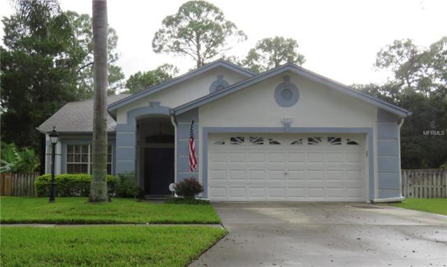 10412 Springrose Drive, Tampa, FL 33626 (MLS #U8014118) :: Team Bohannon Keller Williams, Tampa Properties