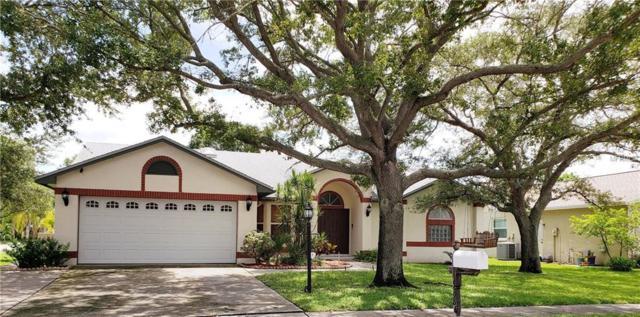 5884 107TH Terrace N, Pinellas Park, FL 33782 (MLS #U8014223) :: The Light Team