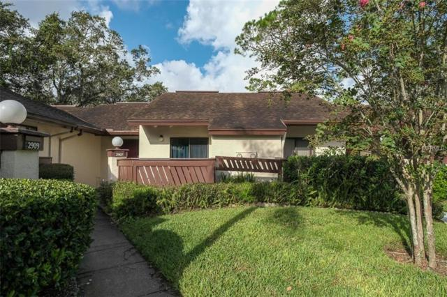 2907 Fig Court, Palm Harbor, FL 34684 (MLS #U8014436) :: FL 360 Realty