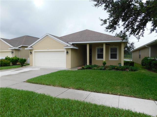 9604 Patrician Drive, New Port Richey, FL 34655 (MLS #U8014441) :: Baird Realty Group