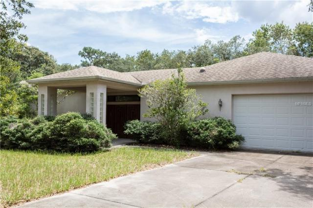 14330 Dabney Court, Spring Hill, FL 34610 (MLS #U8015061) :: The Duncan Duo Team