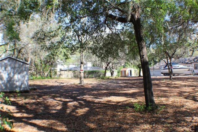 Englewood Avenue, Tarpon Springs, FL 34689 (MLS #U8015236) :: Zarghami Group