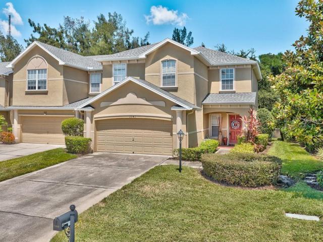 1041 Bella Vista Drive NE, St Petersburg, FL 33702 (MLS #U8015339) :: The Duncan Duo Team