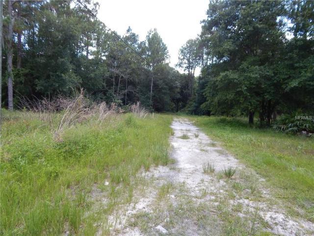 1754 Country Woods Dr, Lakeland, FL 33809 (MLS #U8015354) :: The Light Team