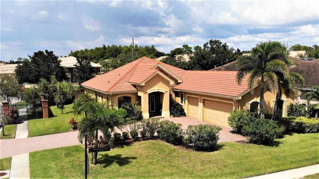 2561 Grand Lakeside Drive, Palm Harbor, FL 34684 (MLS #U8015632) :: Remax Alliance