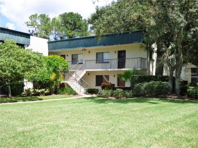 3300 Fox Chase Circle N #235, Palm Harbor, FL 34683 (MLS #U8015841) :: KELLER WILLIAMS CLASSIC VI