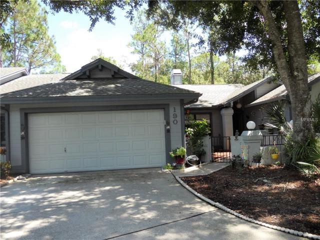 190 Pinewinds Boulevard, Oldsmar, FL 34677 (MLS #U8015863) :: O'Connor Homes