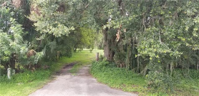 6217 Perrine Ranch Road, New Port Richey, FL 34655 (MLS #U8016213) :: Griffin Group