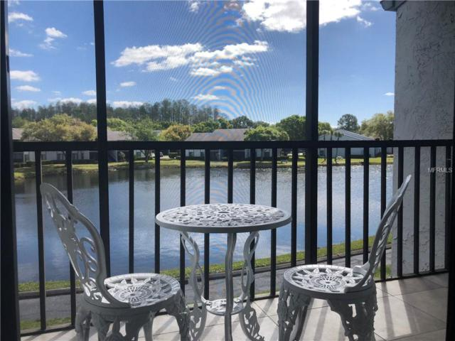 1151 Pine Ridge Circle W F2, Tarpon Springs, FL 34688 (MLS #U8016425) :: Team Bohannon Keller Williams, Tampa Properties