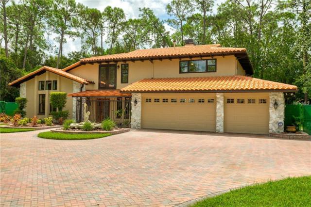 12537 Bronco Drive, Tampa, FL 33626 (MLS #U8016527) :: Jeff Borham & Associates at Keller Williams Realty