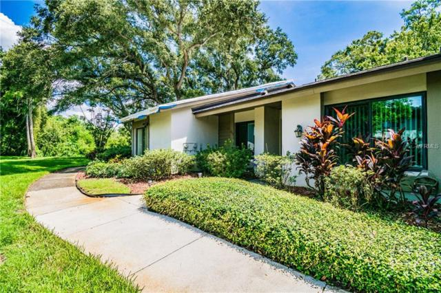 1702 Cypress Trace Drive, Safety Harbor, FL 34695 (MLS #U8016641) :: Griffin Group