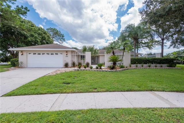 430 Holly Hill Road, Oldsmar, FL 34677 (MLS #U8016646) :: O'Connor Homes