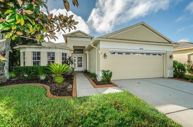1046 Dustan Place, Trinity, FL 34655 (MLS #U8017149) :: Lock and Key Team