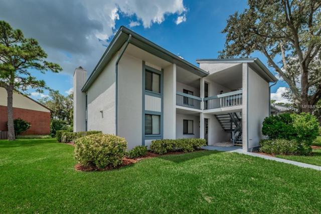 215 Martha Lane, Oldsmar, FL 34677 (MLS #U8017221) :: O'Connor Homes