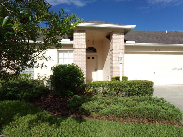 1033 Almondwood Drive, Trinity, FL 34655 (MLS #U8017362) :: Lock and Key Team