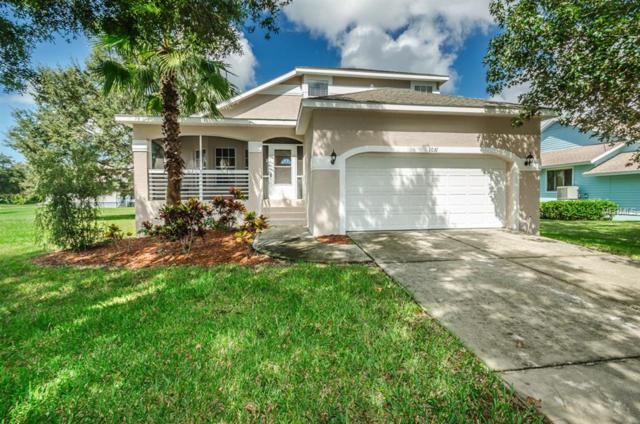 1031 Lake Avoca Place, Tarpon Springs, FL 34689 (MLS #U8017534) :: The Duncan Duo Team