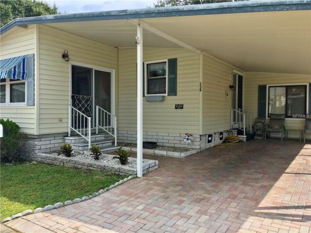 236 Pelican Drive N, Oldsmar, FL 34677 (MLS #U8017593) :: O'Connor Homes