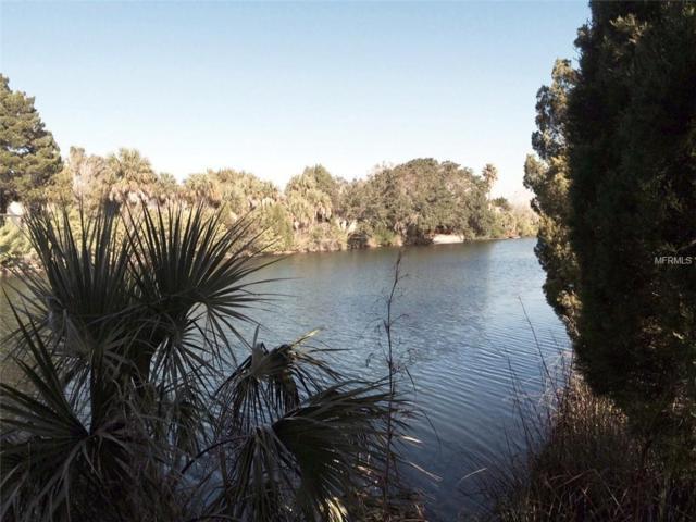 3233 Rose Arbor Drive, Hernando Beach, FL 34607 (MLS #U8017616) :: Team Pepka