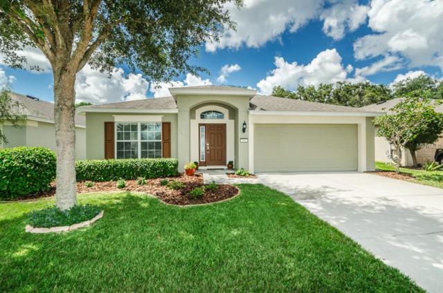 865 Alpine Thistle Drive, Brooksville, FL 34604 (MLS #U8017633) :: Lock and Key Team