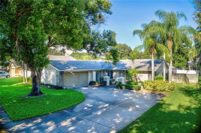 1141 Ridgegrove Drive W, Palm Harbor, FL 34683 (MLS #U8017668) :: Lock and Key Team